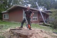 Another example of the result of our specialty of removing large trees.